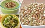 Зеленая гречка в сыроедении: польза, как подготовить крупу и рецепты
