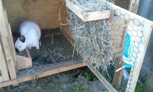 Изготовление кормушек для кроликов своими руками