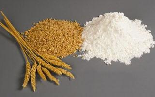 Особенности твердых сортов пшеницы