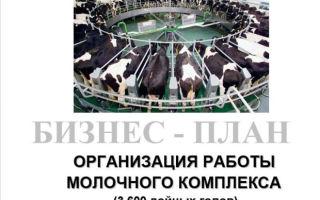 Составление бизнес-плана фермы крс