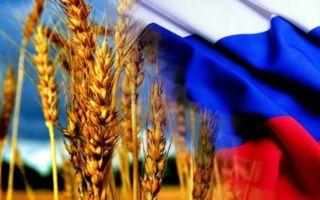 Экспорт российского зерна по годам
