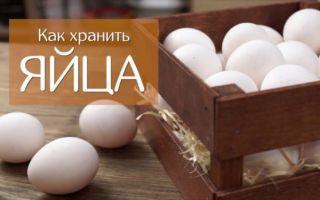 Как долго и каким способом хранить яйца