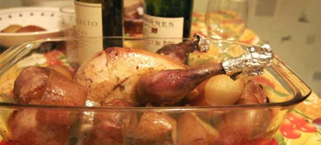 Как поймать, ощипать и правильно приготовить фазана