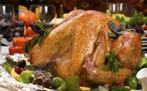 Царская дичь — все известные способы приготовления лебедей