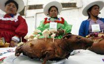 Мясо морских свинок