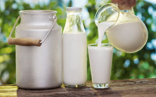 Изготовление молочной продукции в домашних условиях