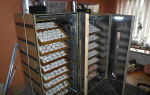 Конструкции лотков переворота для инкубатора