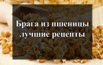 Рецепты пшеничной браги