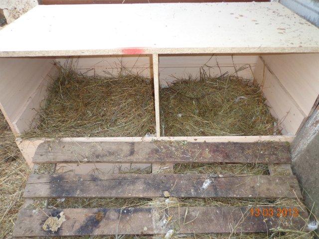 Размеры гнездо для индоуток своими руками