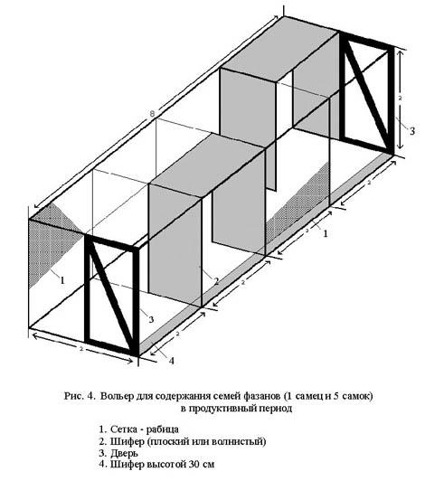 Схема вольера на 2 секции