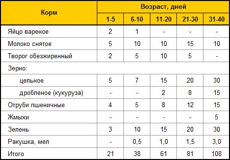 Кормление индюшат в домашних условиях с первого дня - Gksem.ru