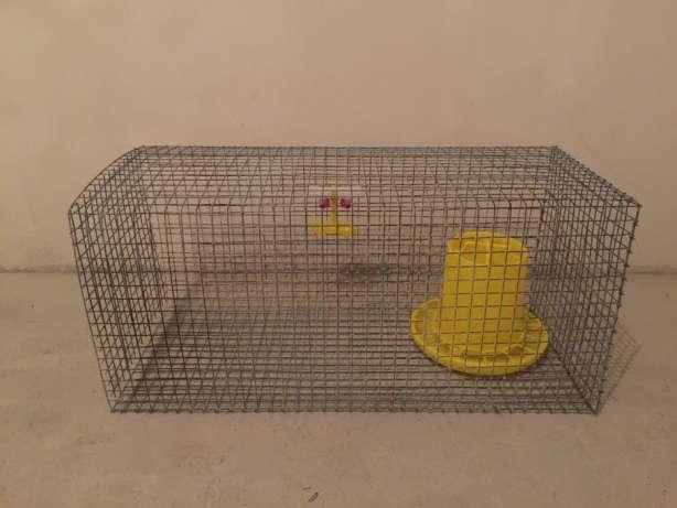 Клетка для перевозки