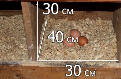 Размеры гнезда