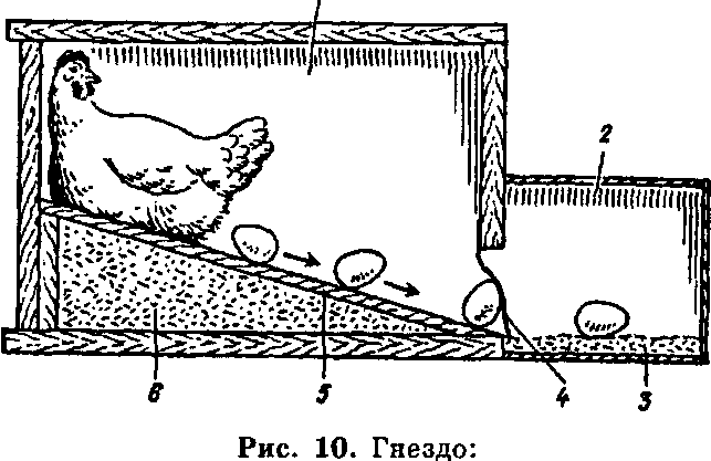 Схема гнезда