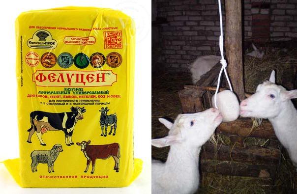 Лизунец для коз