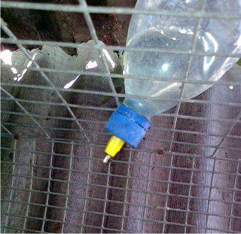 Ниппельная система из бутылки
