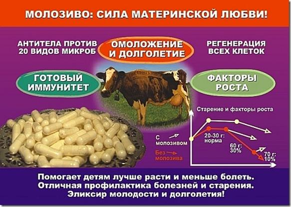 Состав коровьего молозива