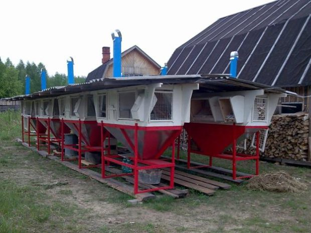 Мини ферма для кролей по Михайлову