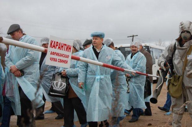 Ачс в Крыму в 2016 году