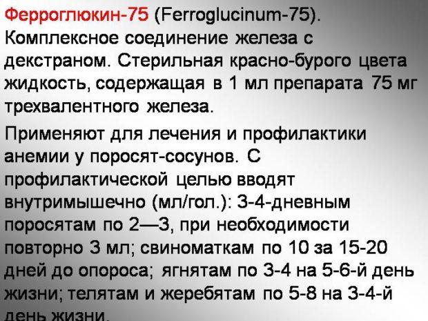 Препарат Ферроглюкин для поросят
