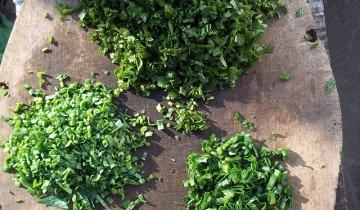 Свежая зелень в рационе обязательна