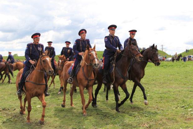 Донские кони - кавалерийская порода
