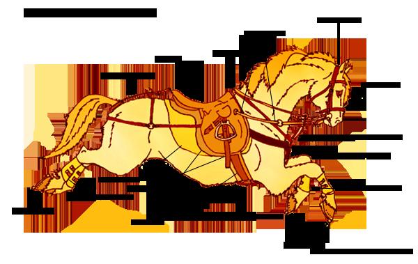 Амуниция лошади полный комплект