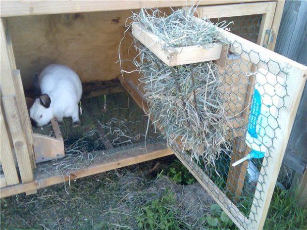 Кормушки для кроликов для сена своими руками чертежи