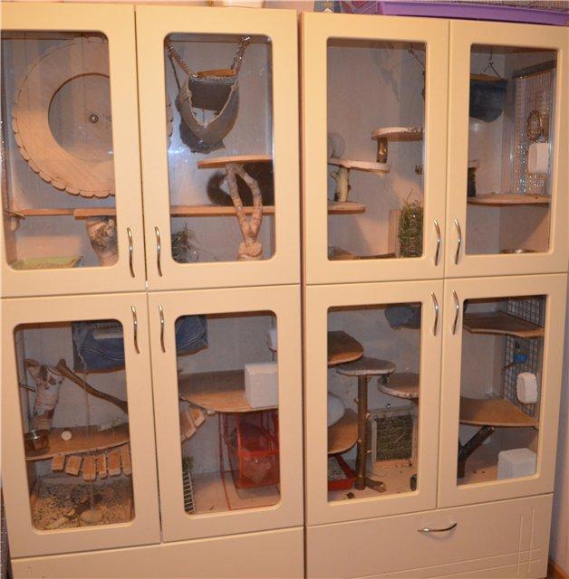 Клетка для шиншиллы своими руками в домашних условиях фото 577
