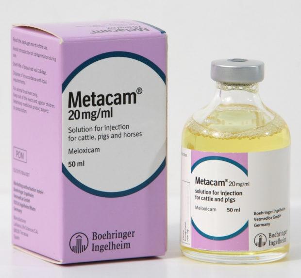Препарат Метакам снимает боль в животе