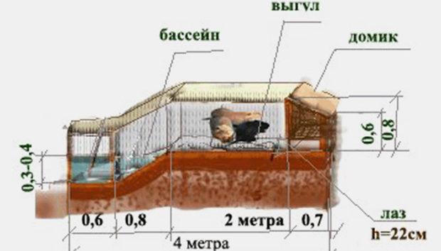Схема вольеры для нутрий