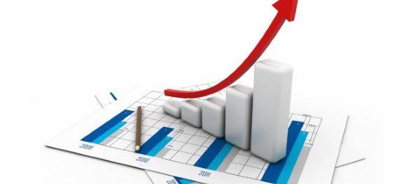 Шиншилловый бизнес-план - довольно выгодное мероприятие
