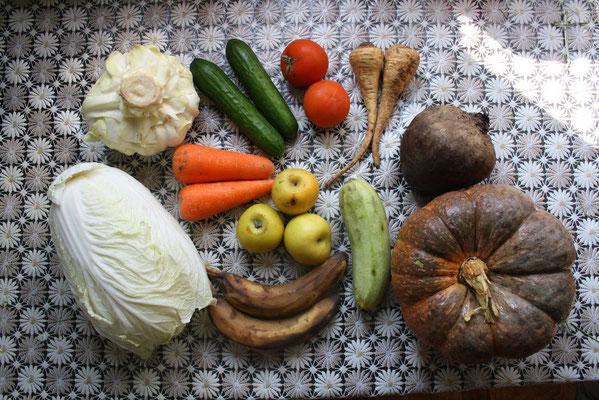Сочные корма - овощи и фрукты