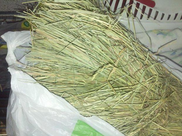 Травяное сено - универсальный корм