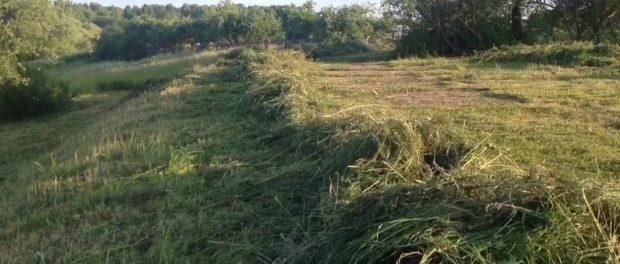 Просушка сена при заготовке