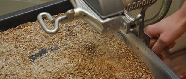 Дробленное зерно - нужный корм
