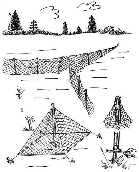 Виды сетей на куропатку