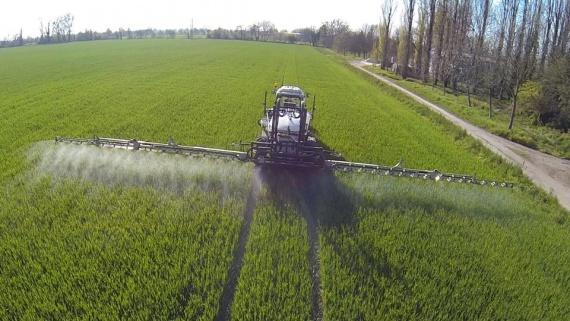 Удобрение пшеницы