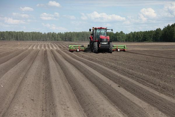 ПОдготовка почвы - боронование