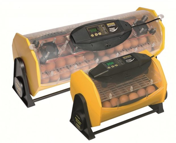 Brinsea Fully Automatic 12, 24 egg incubator
