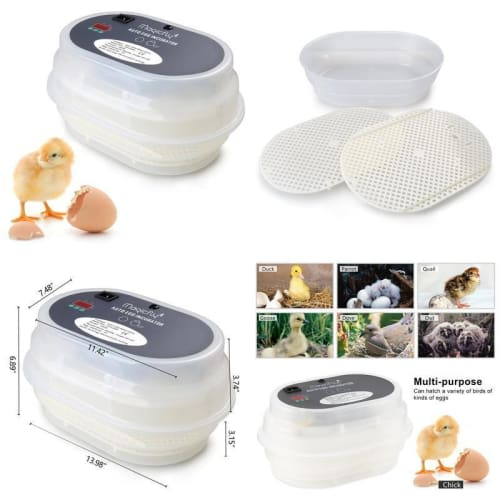Magicfly Digital Mini Fully Automatic Egg Incubator 9-12 Eggs Poultry Hatch