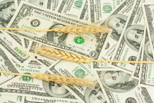 Цена на зерно